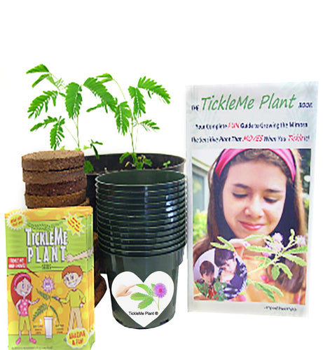 TickleMe Plant Classroom Kit for 15