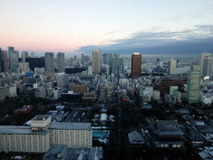 Tokyo: A Whirlwind