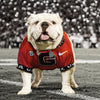 Georgia Bulldogs - UGA Under the Lights
