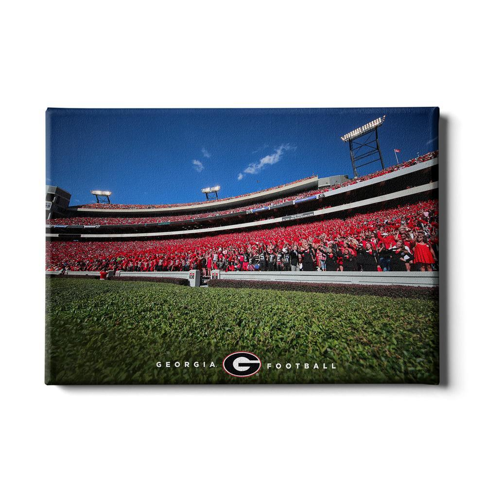 Georgia Bulldogs - Georgia Football - College Wall Art #Canvas