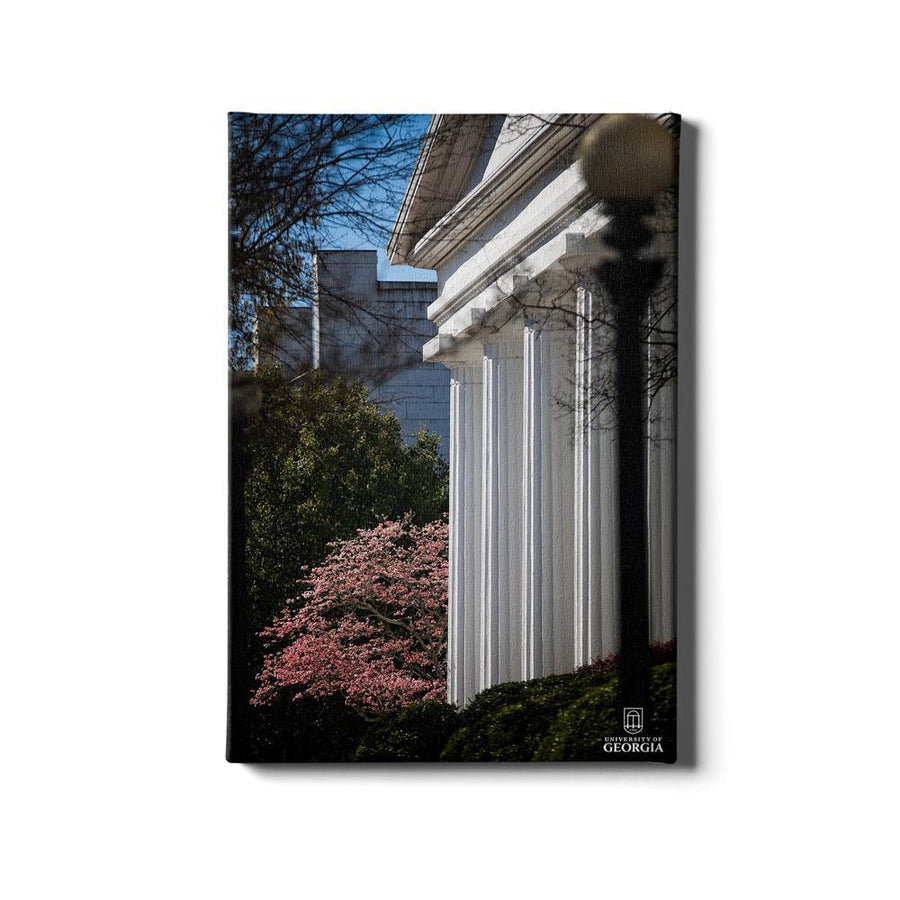 Georgia Bulldogs - Pillars of Strength - College Wall Art #Canvas
