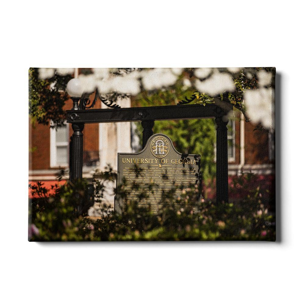 Georgia Bulldogs - Looking Through the Arch - College Wall Art #Canvas