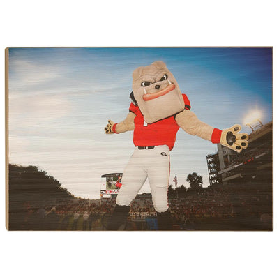 Georgia Bulldogs - Hairy the Dawg - College Wall Art #Wood