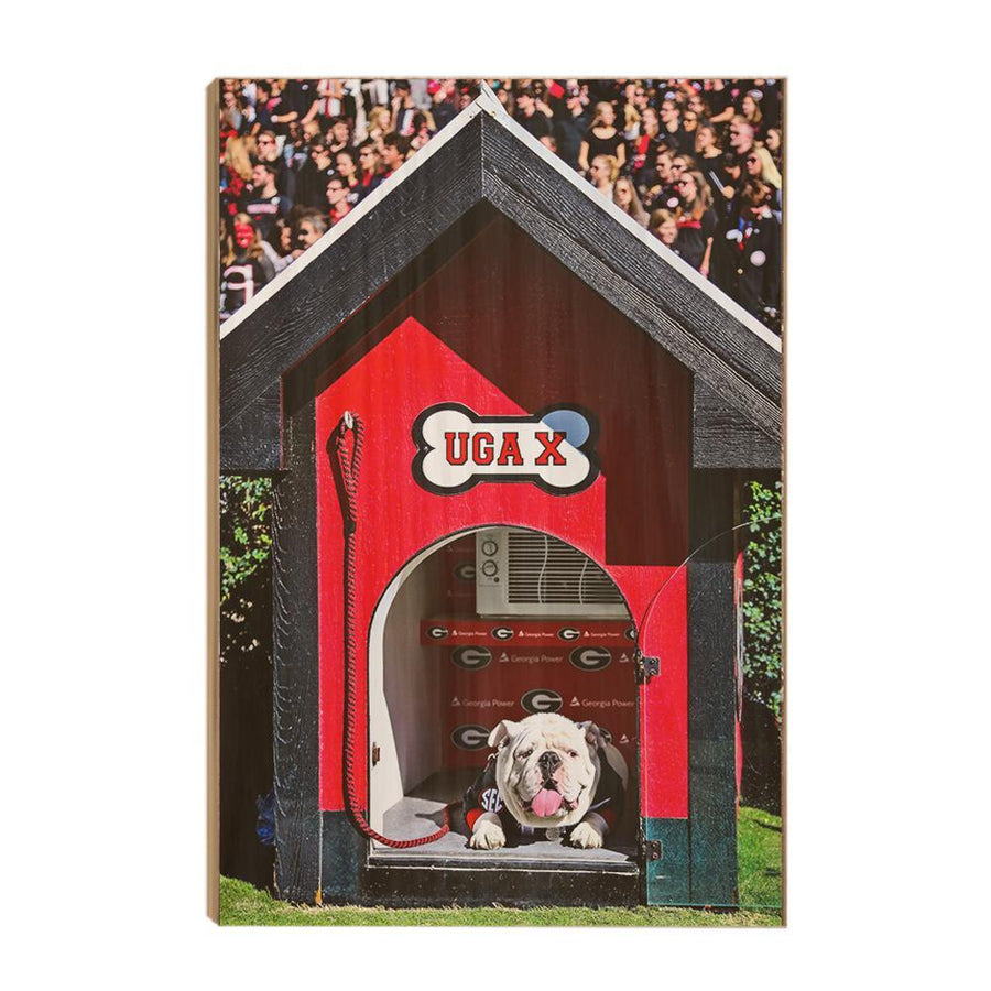 Georgia Bulldogs - Uga X in the House - College Wall Art #Canvas