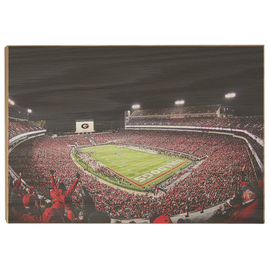 Georgia Bulldogs - Sanford Stadium II - College Wall Art #Canvas