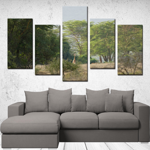Giraffe 5 Panels Canvas Prints Wall Art for Wall Decorations