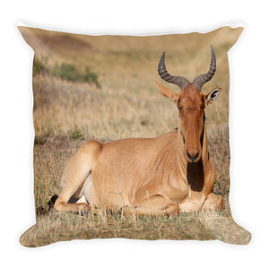 Eland and Haartebeest Square Pillow