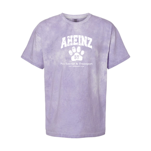 Distressed Arched Collegiate - Amethyst Color Blast T-Shirt