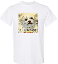 This Is InZANE T-shirt YOUTH S - XL