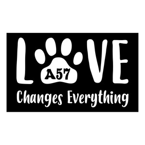 "Love Changes Everything 6"" X 10"" Sign"