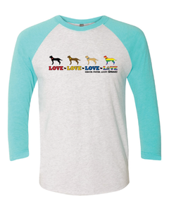 """Love is Love is Love"" 3/4 Sleeve Raglan Tee"