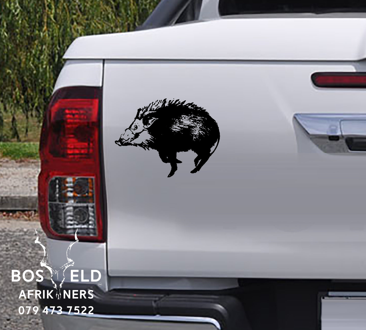 South african bush pig bosvark vinyl sticker decal