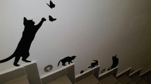 cat play wall sticker butterflies stickers decor decals for walls