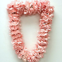Blush or White Carnation Lei - Blushes & Blooms