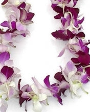 White / Purple Dendrobium Orchid Single Bloom Lei - Blushes & Blooms