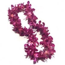 Purple Dendrobium Orchid Single Bloom Lei - Blushes & Blooms