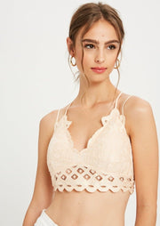 Wishlist Scalloped Lace Bralette (Blush)