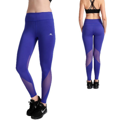 Bold Blue MaxLite Leggings - Lotus Leggings