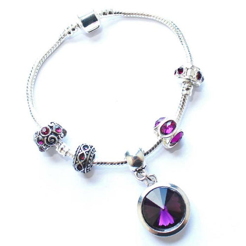 Teenager's 'February Birthstone' Amethyst Colored Crystal Silver Plated Charm Bead Bracelet
