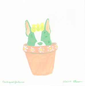 Cactus Pup no. 2 - Original Painting