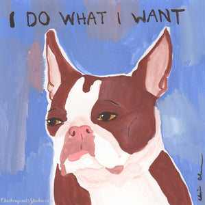 I Do What I Want - Original Boston Terrier Painting