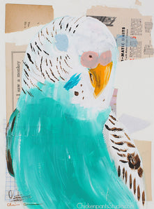 Turquoise Budgie -  Original Mixed Media Budgie Painting