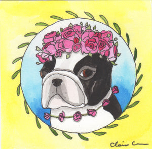 "Original Boston Terrier Painting: ""My Patience Has Worn So Thin I Can No Longer Wear It In Public"""