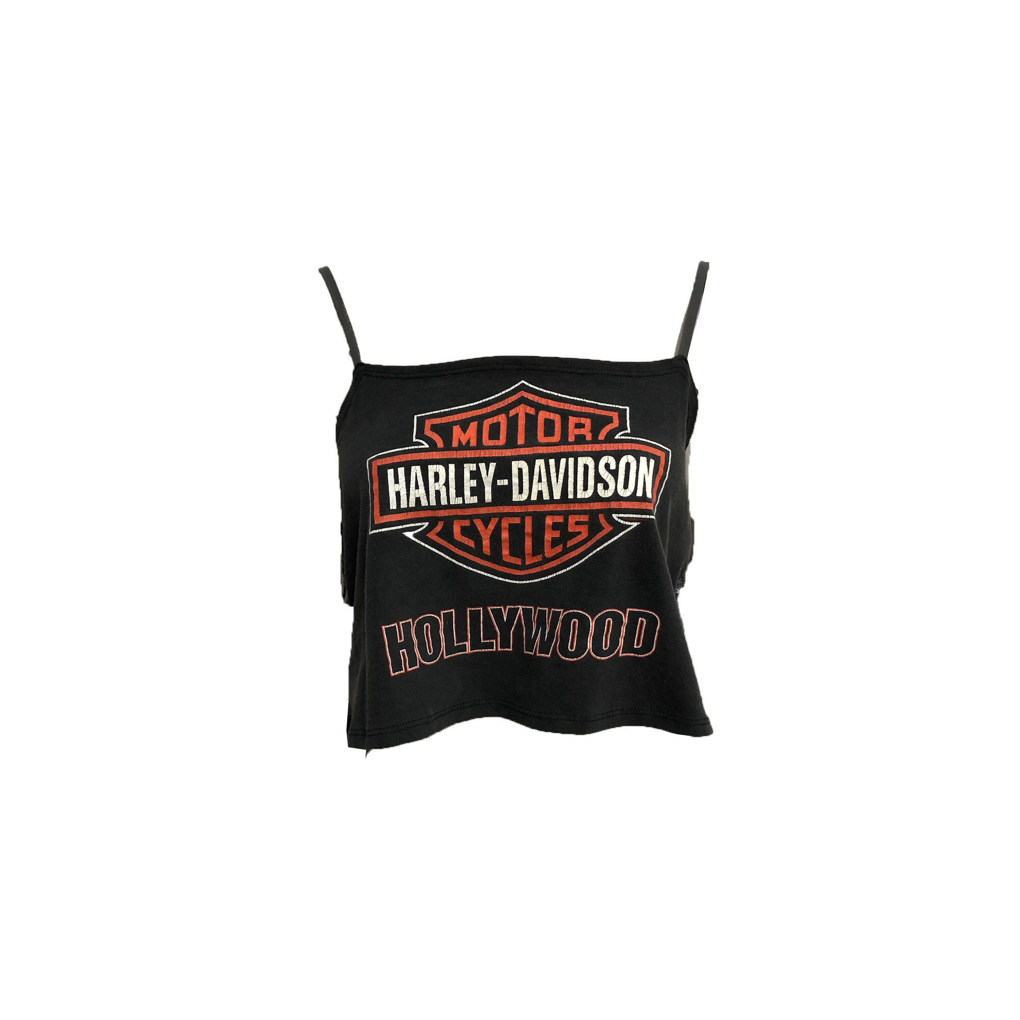 "Harley Hollywood ""Tommy"""
