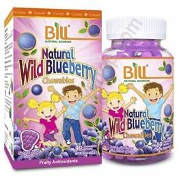 Bill Natural Wild Blueberry