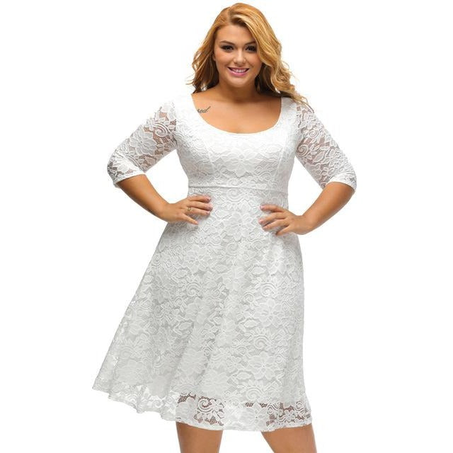 Black/White O-Neck Zip Back 3/4 Sleeve Lace A-Line Plus Size Dress