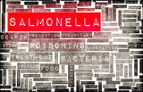 How to Filter Salmonella in Your Drinking Water