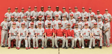 D3 SAVAGE SPOTLIGHT: WPI BASEBALL'S OFFENSE (30 taters in 21 games)