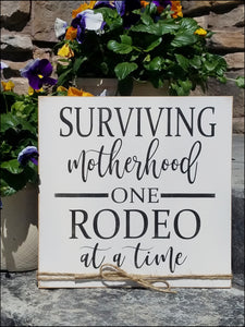 Surviving Motherhood One Rodeo At A Time
