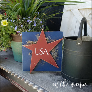 Rustic USA Star Door Hanger