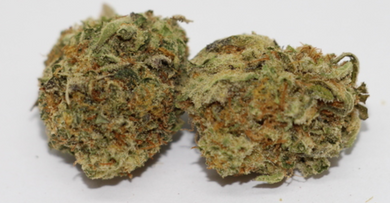 Mendo - Modesto - California Legal Cannabis - 21 Plus Medical