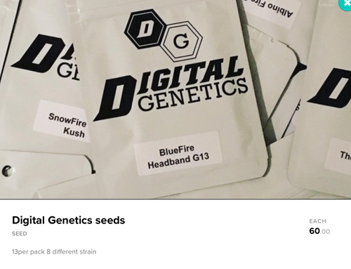 Digital Genetics Seeds - Legal 21+ Medical Marijuana Seeds
