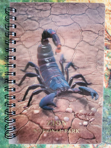 Scorpion 3D Notebook