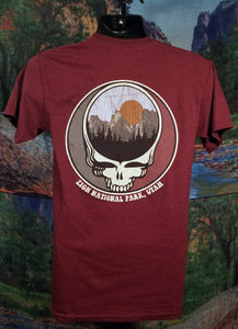 Brain Surgery Mountain T-Shirt