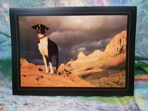 Zion Dog Greeting Card