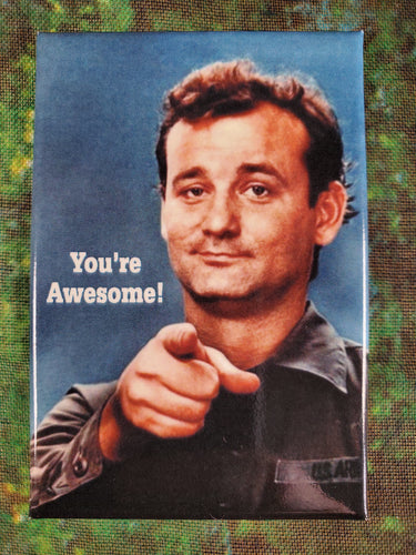 You're Awesome! - Magnet
