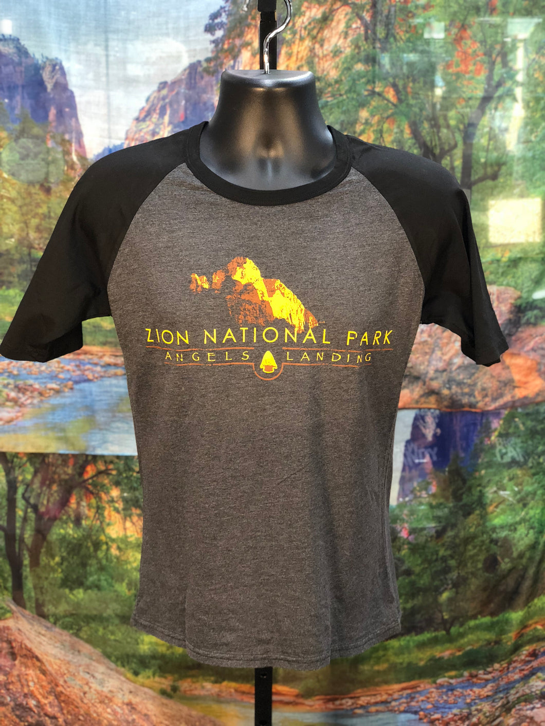 ZNP Angels Landing T-Shirt