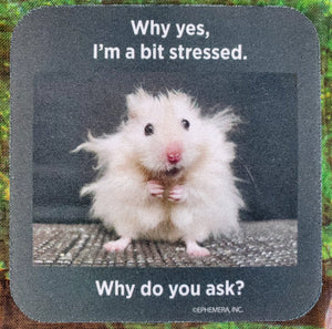 A Bit Stressed Sassy Drink Coaster