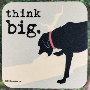 Think Big Sassy Drink Coaster