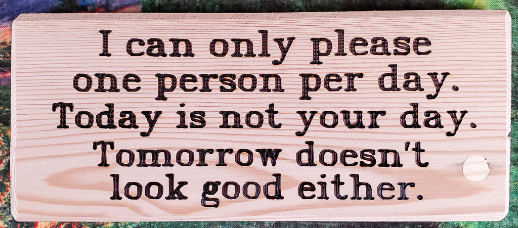I Can Only Please One Person Wood Sign