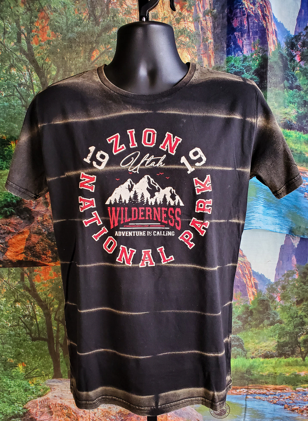 Zion Wilderness Faded T-Shirt