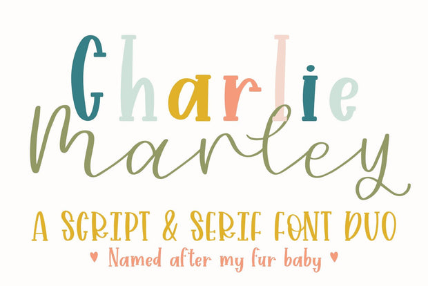 Huge Bundle of 24 Fonts