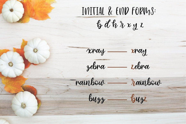 initial and end forms cinnamon sugar font