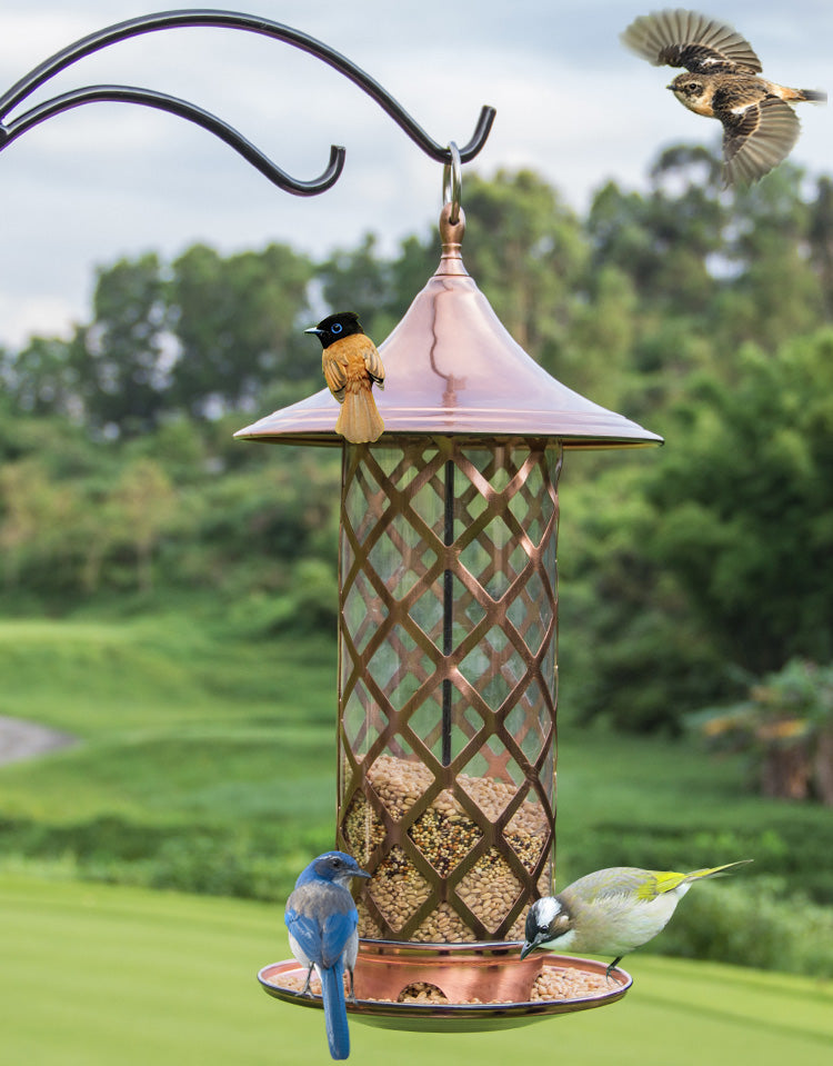 perky prevnext dp wild com gone chewy feeder squirrel be brown ac pet food bird