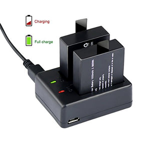 2 Rechargeable Camera Batteries with USB Dual Battery Charger