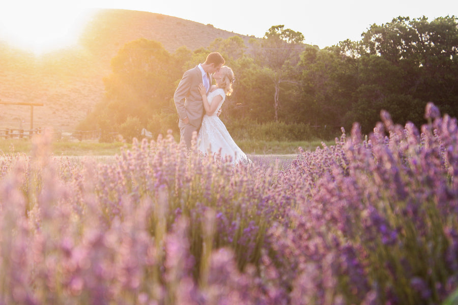 Lavender Wedding Co - Our Story